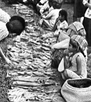 Восточная Малайзия (Сабах). Разделка рыбы для продажи на рыбном рынке в г. Туаран.