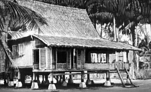 Малайский дом.