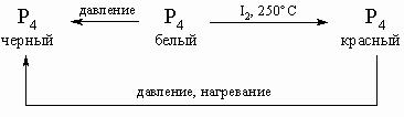 АЗОТА ФОСФОРА СЕМЕЙСТВО фото №11