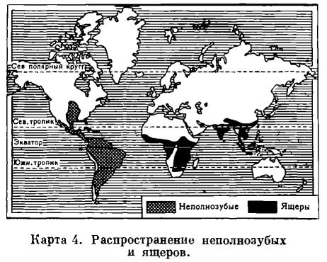 ОТРЯД НЕПОЛНОЗУБЫЕ (EDENTATA)  Карта. 6 4.