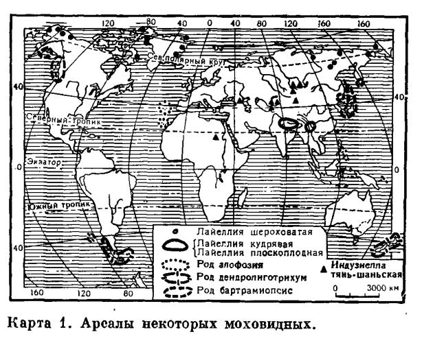 Условия произрастания и географическое распространение
