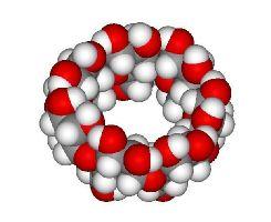 Рис. 1. Циклодекстрин способен образовывать молекулярные клатраты