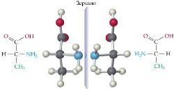 Аланин - хиральная аминокислота.