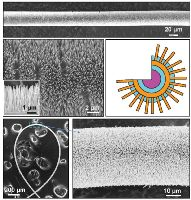Механические преобразователи на основе нанопроводов могут получать энергию за счет вибрации, воз