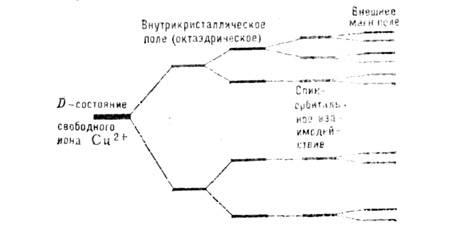 045_064-15.jpg