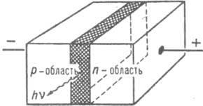 541_560-64.jpg