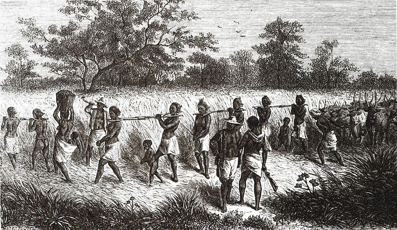 Пленников угоняют из деревни вместе со скотом