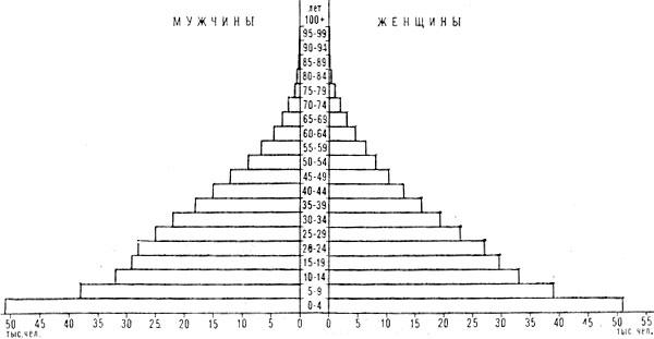 Возрастно-половая пирамида населения Гамбии.<script async src=